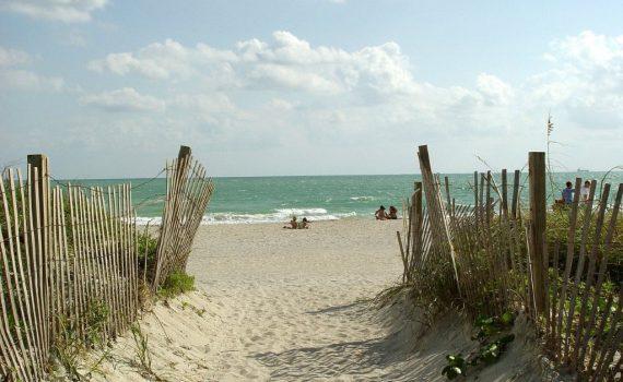Me détendre à la plage - Portrait équipe - Anita Guibert