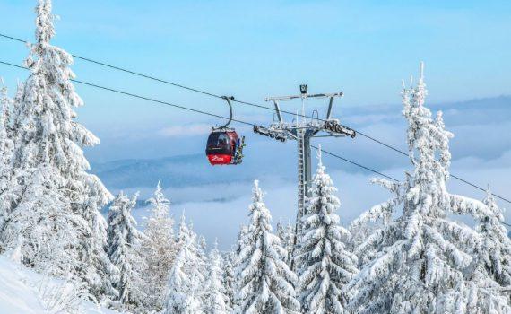 Ski - Portrait équipe - Anita Guibert