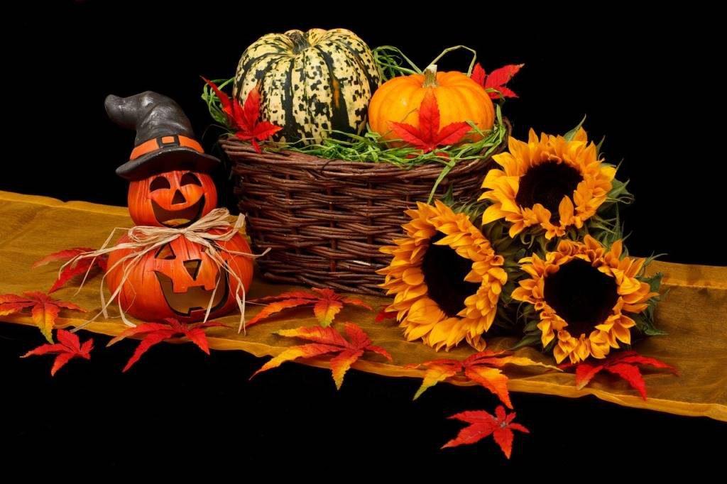 halloween-destination-vendee-grand-littoral